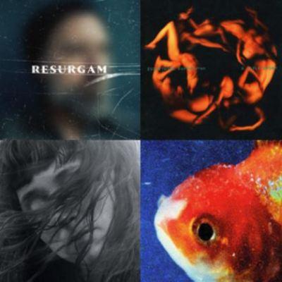 Musik entdecken neuen Alben Sommer 2017 MUSIKMUSSMIT